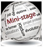 Mini-stages au lycée professionnel GOUSSIER